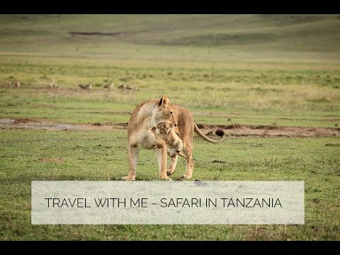 Travel with me - Safari in Tansania Teil 2