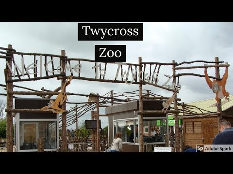 Travel Guide Twycross Zoo Leicestershire UK Pros And Con's