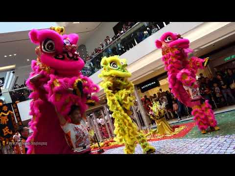 Hong Kong Chinese Lunar New Year 2018 - Lion Dance Performance @  Festival Walk (20180220)