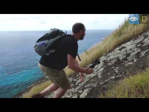 Pitcairn Island | South Pacific & French Polynesia | Lindblad Expeditions-National Geographic