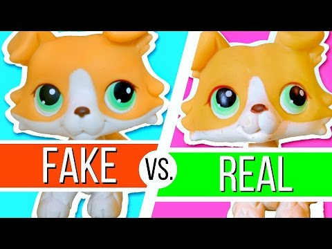 Lps Real Vs Fake How To Know If Your Lps Is Authentic Collie