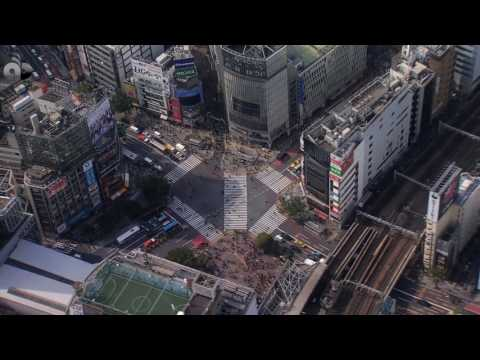 Tribute / Streets of Tokyo  / Special wards of Tokyo  / Japan  / Shibuya 渋谷区
