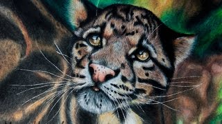 Рисунок цветными карандашами. Дымчатый леопард. Drawing colored pencil