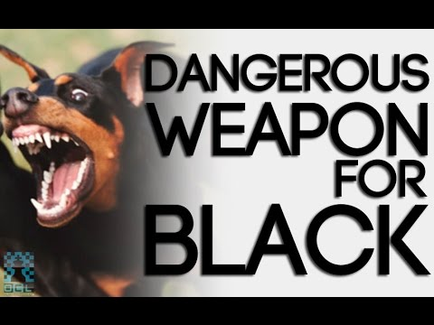 A TRUSTED and DANGEROUS Weapon for Black! - IM Bill Paschall