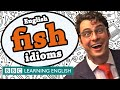 Fish idioms - The Teacher