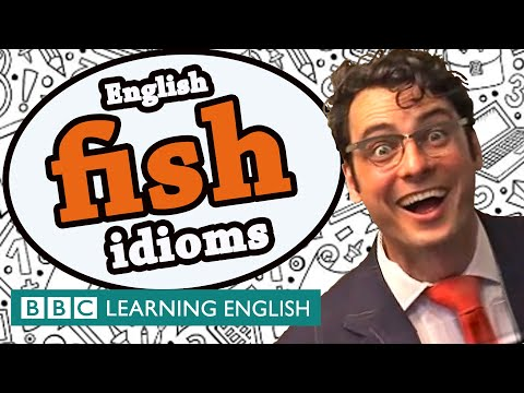Fish Idioms - The Teacher