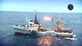 «Жити морем»: Рибалка в Охотському морі. Конвеєр