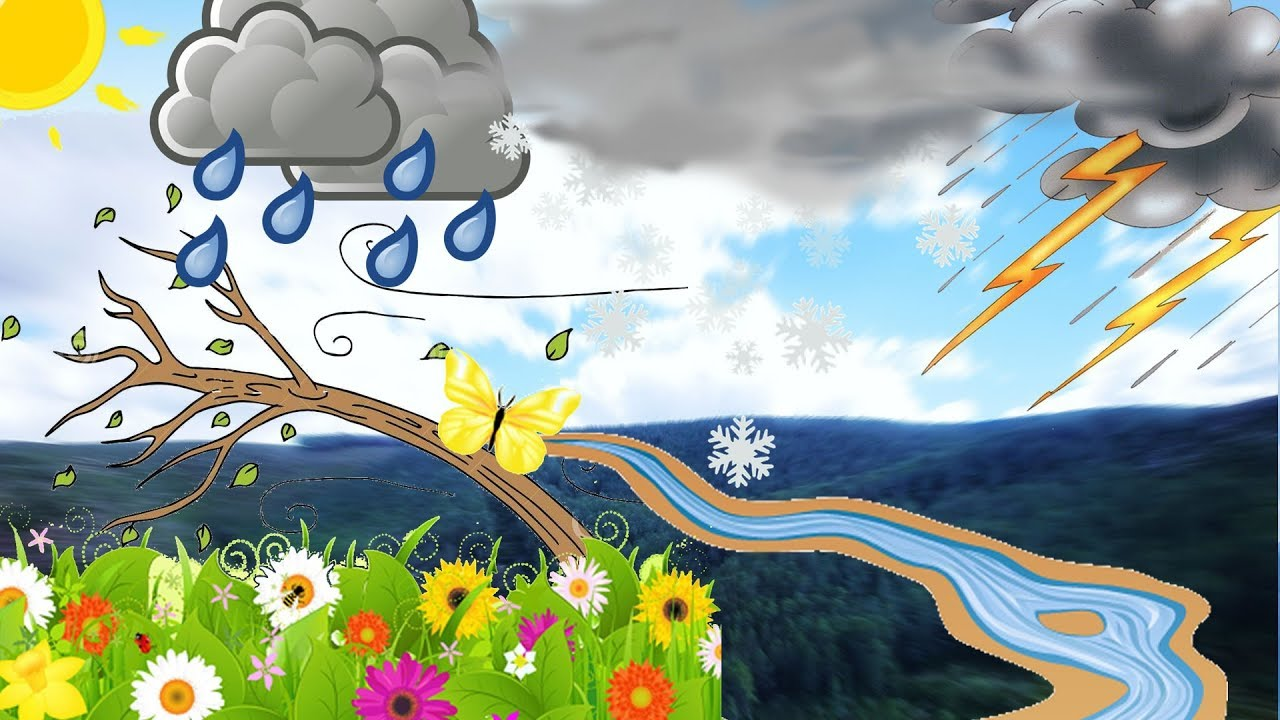 Sonidos de la naturaleza para ni os youtube - Dibujos de pared para ninos ...