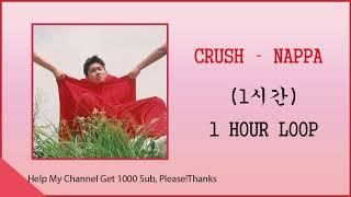 《1시간/1 HOUR LOOP 》 CRUSH (크러쉬) - NAPPA (나빠)
