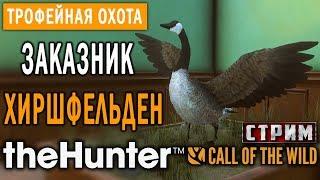 theHunter Call of the Wild #9 СТРИМ