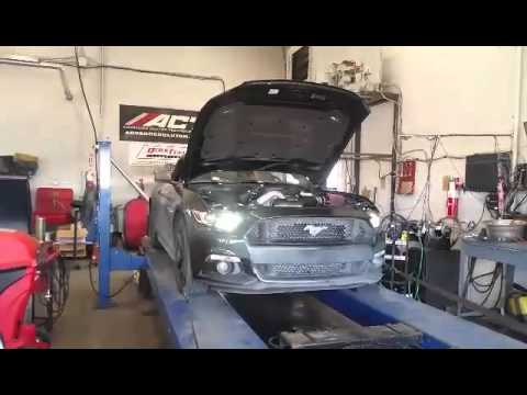 2015 Mustang S550 Paxton Supercharged Beefcake Special Dyno Run