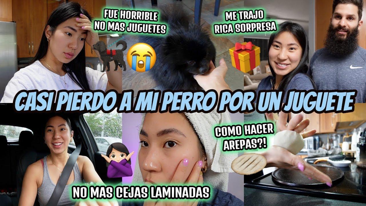 Download Casi Pierde La Vida🥺💔Adios A Los Juguetes De Perros🚫 Quede Pelona😓 - Undiaconcarol