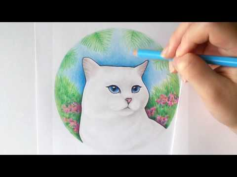 Drawing Coby the Cat (Cartoon)