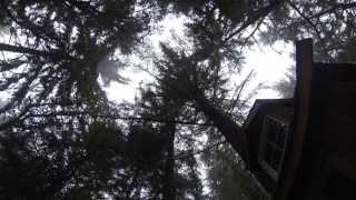 Treehouse Sunrise