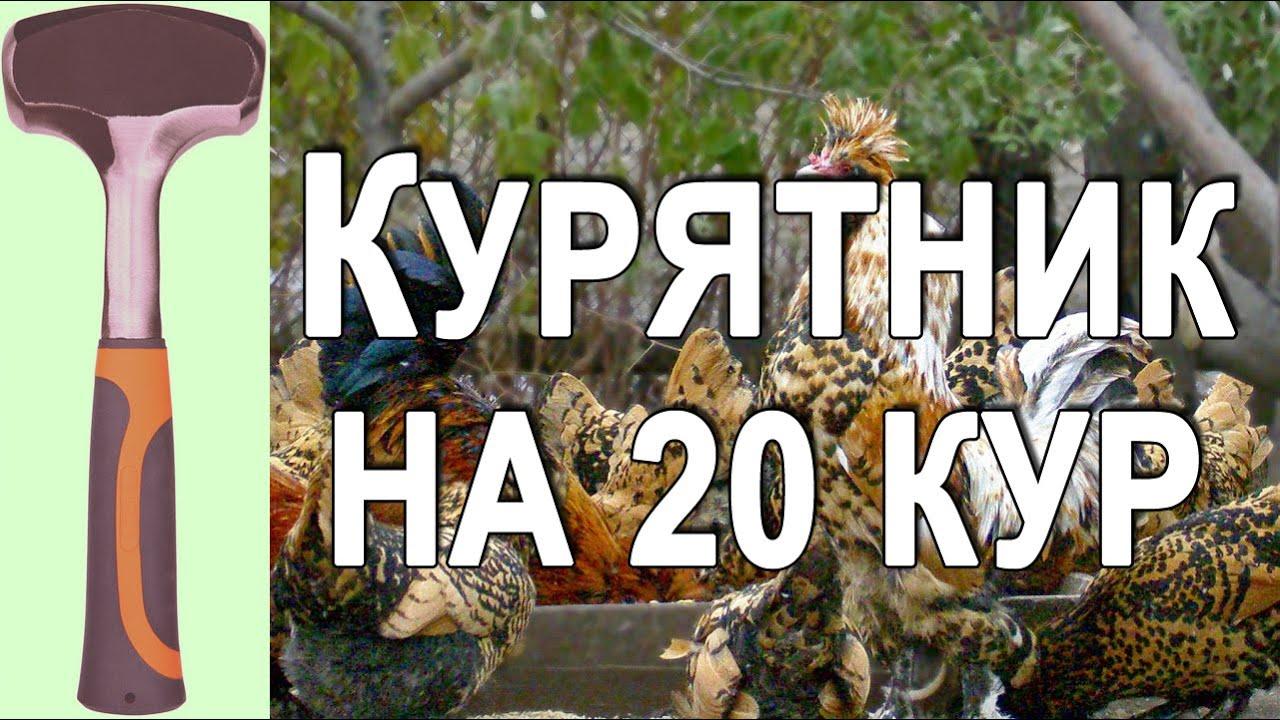 10 сен 2016. Наш сайт http://18763. Host. Legiona. Ru. Тел +7 915 038 60 46 размеры 260 х 120 х 145 см количество кур до 10 кур размер бокса 100 х 120 х 70 размер вольера 22.