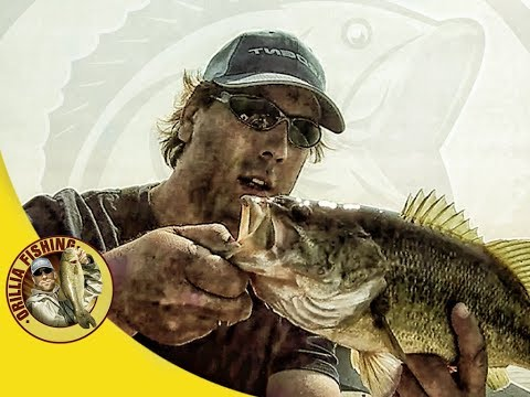Senko Fishing - Grinding out end of summer - Lake Couchiching Bass fishing (2017)