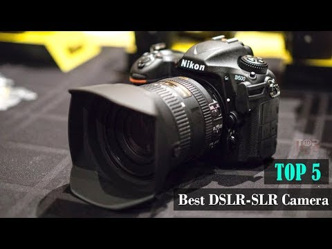 5 Best Budget SLR DSLR Camera 2019 for Beginners Buy From Amazon #13