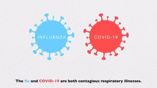 Flu and COVID-19: Similarities and Differences