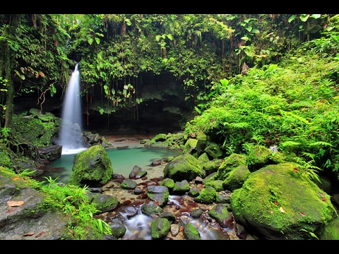 HOT NEWS Roseau 2017 Best Of Roseau Dominica Tourism