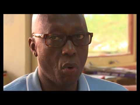 (Dossier) Agriculture : Le business du riz local en Côte d'Ivoire