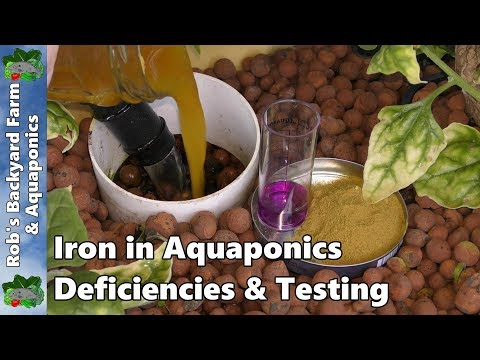Iron in Aquaponics | Deficiencies Testing & Chelated Iron