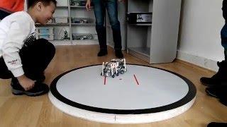 Сумо шагающих роботов.