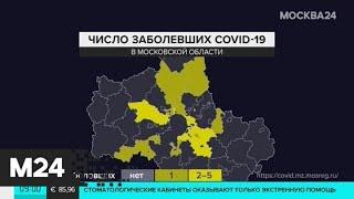 В Подмосковье коронавирус нашли у 49 пациентов - Москва 24
