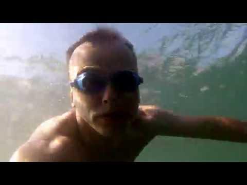 Побережье черного моря. подводная съемка.