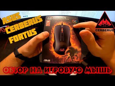 Мышь Asus Cerberus Fortus USB Black (90YH01H1-BAUA00)