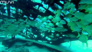 Veho Muvi K-Series: Scuba Diving in the Caribbean