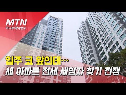 입주 코 앞인데…새 아파트 전세 세입자 찾기 전쟁 / 머니투데이방송 (뉴스)