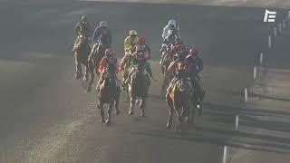 Vidéo de la course PMU PRIX DE BRICQUEBEC