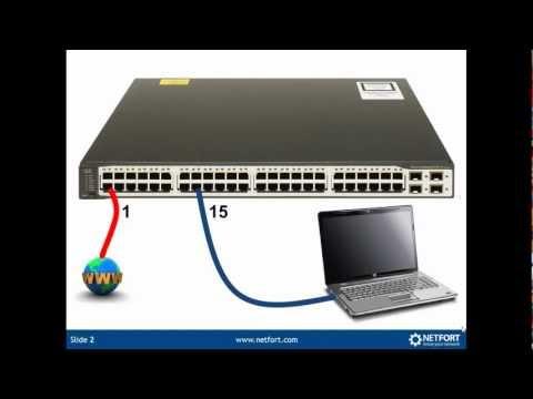 How to setup SPAN ports