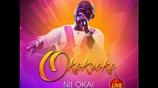NII OKAI - OKOKROKO (live)