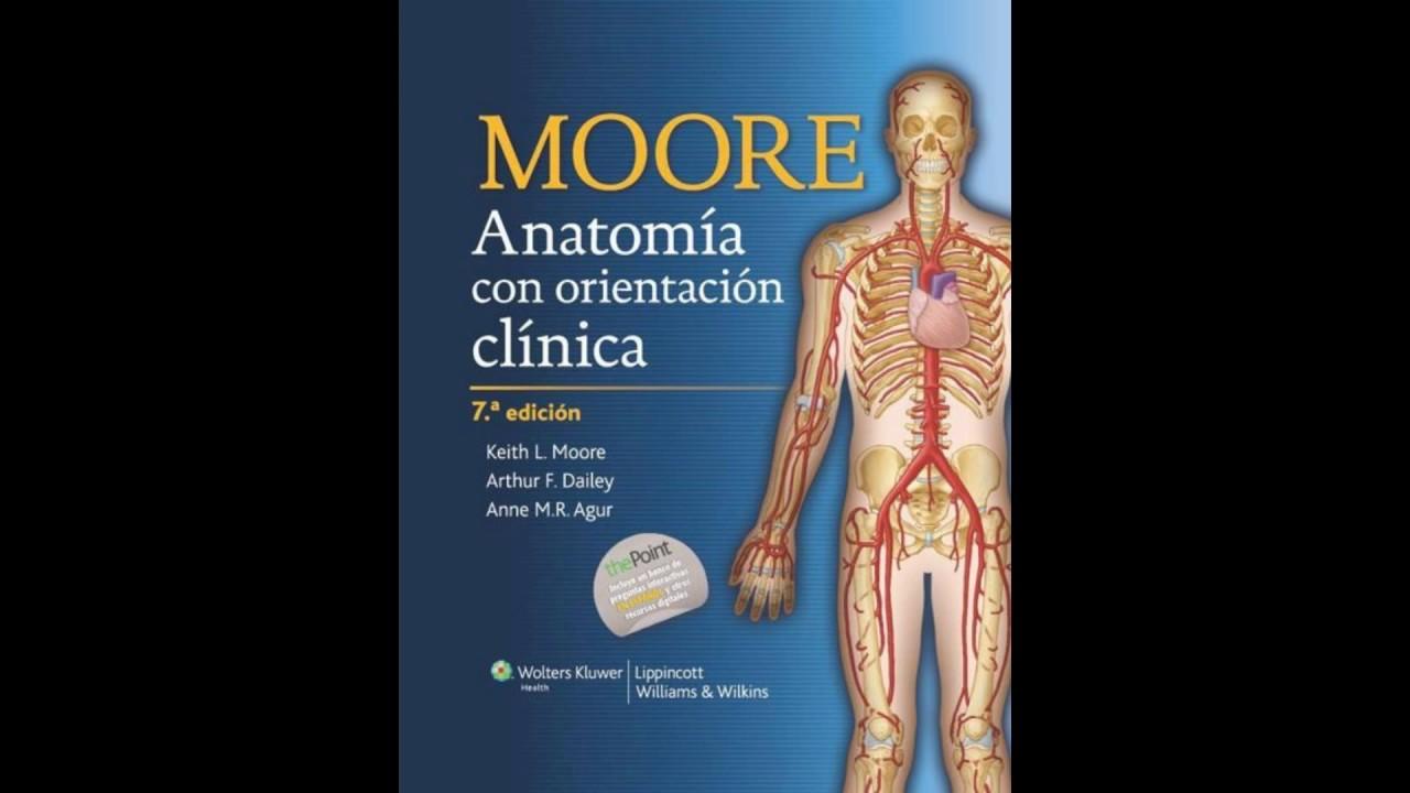 Anatomía de Moore 7ma Ed. PDF - YouTube