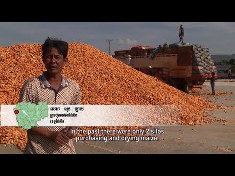 Sustainable Farming to Sustain Cambodia's Future