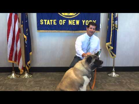 Erie County Executive Mark Poloncarz Takes a Dog Biscuit Break!