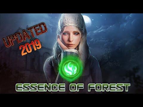 Essence Of Forest [EVENT] Secret Challenge -Forest Quest Guide Black Desert Online