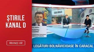 Stirile Kanal D (16.08.2019) - Legaturi bolnavicioase in Caracal! EDITIE SPECIALA