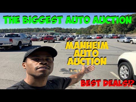 *DEALER ONLY INSIDE ACCESS* MANHEIM AUTO AUCTION WALK AROUND