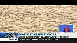 Maize farmers decry delayed supply of planting fertilizer