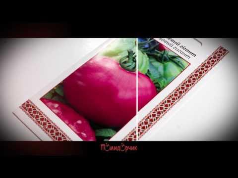 Семена Томат Розовый гигант - Помидорчик