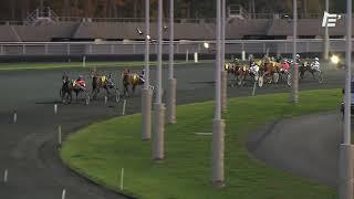 Vidéo de la course PMU PRIX LOUIS CAUCHOIS