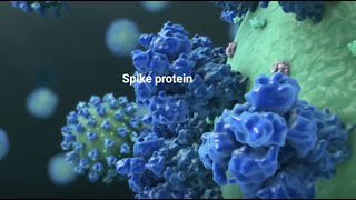 COVID-19 Vaccine: Will It Change My DNA?
