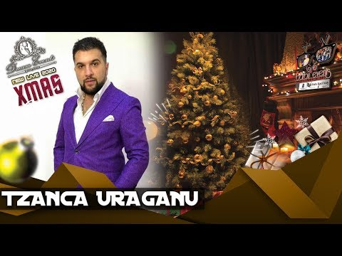 Tzanca Uraganu ❌ Esti iubirea vietii mele NEW HIT 2020 @Dream Events By Barbu Events