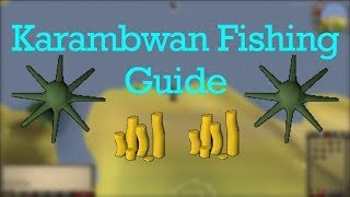 Karambwan fishing guide 2017 - OSRS