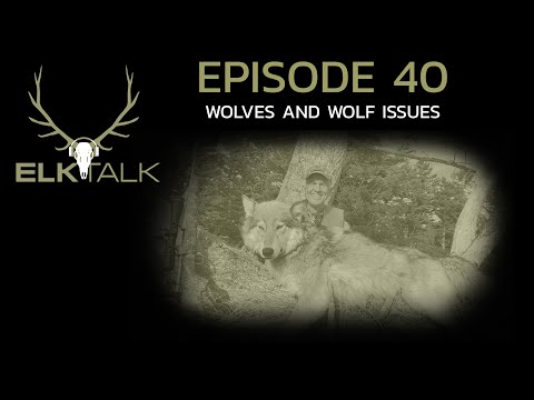 Wolves And Wolf Issues (Elk Talk Podcast EP 40)