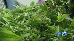 Drive on: New Virginia law changes punishment for marijuana possession