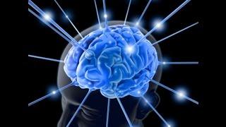 Секреты мозга, Что такое смерть,Свет в конце тоннеля, С В Савельев