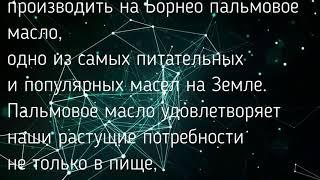 САУНДТРЕК И ТЕКСТ ИЗ ФИЛЬМА ДОМ 14